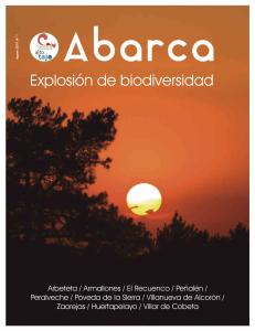 Revista Abarca nº1 (2019)